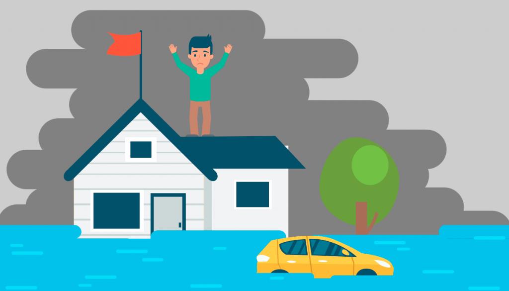 assurance habitat